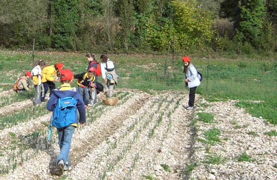 offerte-fattoria-didattica-valnerina